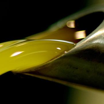 L'ultima fase della lavorazione olio è la spremitura che avviene esclusivamente a freddo.